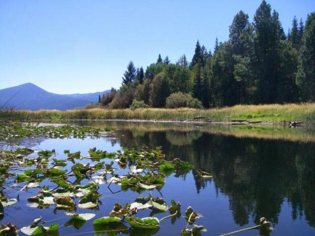 Upper Klamath Lakes in Southern Oregon