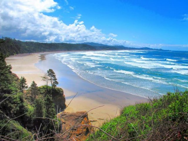 Beverly Beach State Park Camping in Newport Oregon