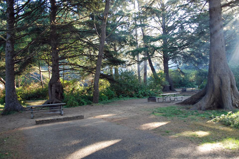 Beverly Beach State Park Oregon Campgrounds