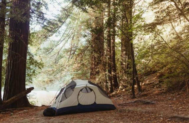 Jedediah Smith State Park Place to Camp in North Carolina