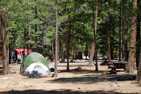 McArthur-Barney Falls Memorial State Park Best Places to Camp in Northern California