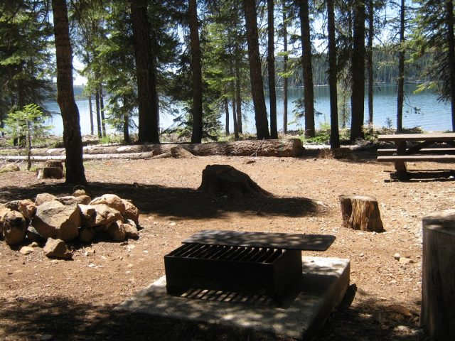 Plumas National Forest Camping Spot in Northern California