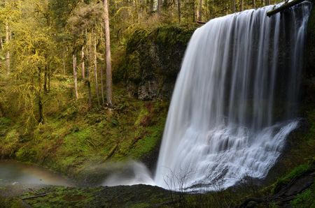 Silver Falls State Park Places to Camp in Oregon