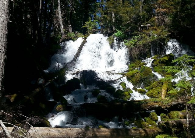 Clearwater Waterfalls in Southern Oregon