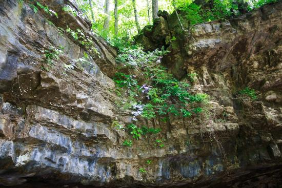 Dunbar Caves in Tennessee