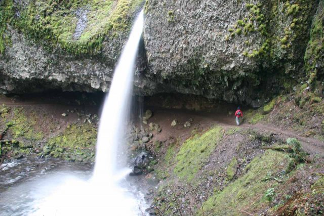 Horsetail Waterfall in Northern Oregon