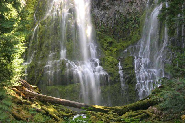 Proxy Waterfalls in Western Oregon