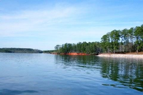 Clarks Hill Lake in Central Georgia