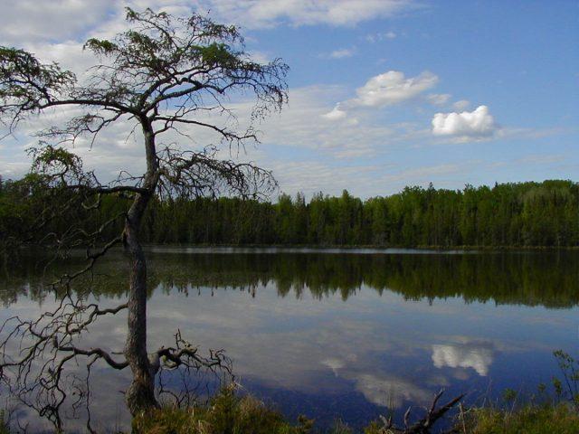 Lake Bemidji in Northern Minnesota