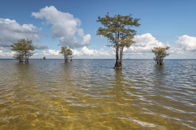 Lake Moultrie in South Carolina
