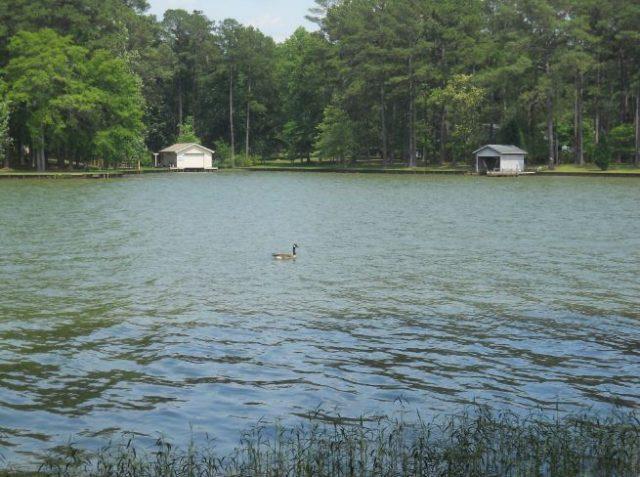 Lake Sinclair in Central Georgia