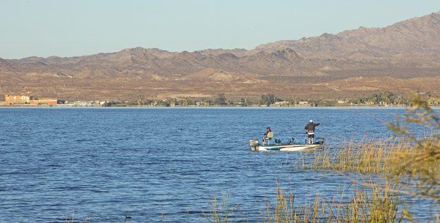 Lake Havasu in Western Arizona