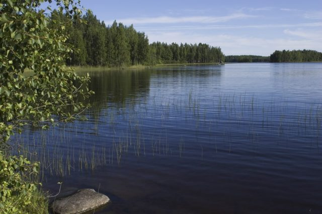 Lake Wylie in North Carolina