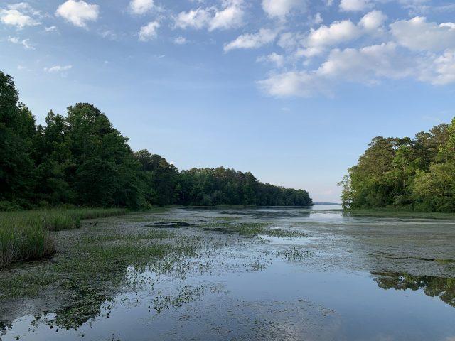 Guntersville Lake Northern Alabama