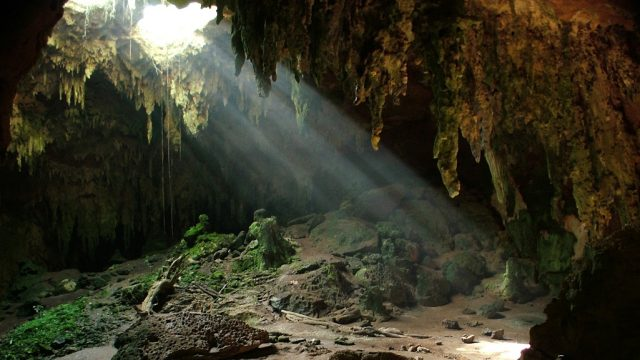 Fern Cave in Northern Alabama