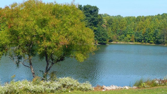 Lake Centennial in Central Maryland