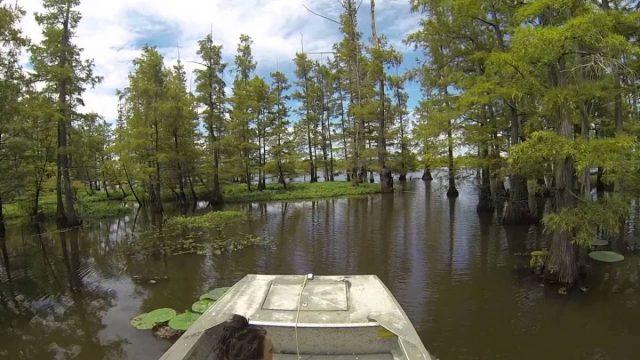 Millwood Lake in Southern Arkansas