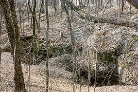 Shelta Cave in Northern Alabama