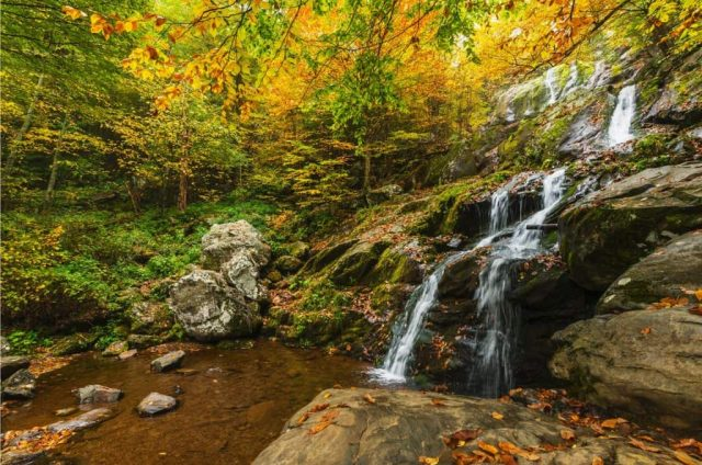 Dark Hollow Falls in Northern Virginia