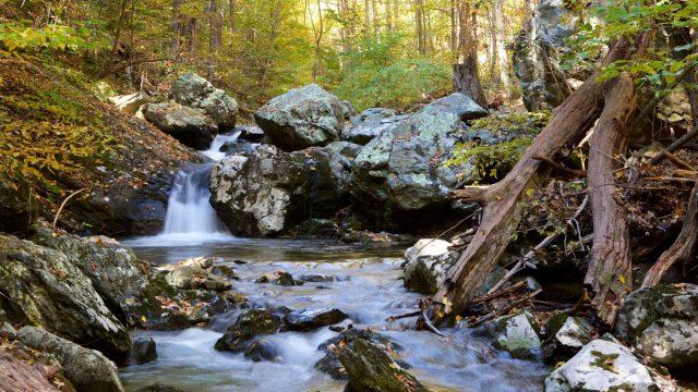 Rose River Falls in Northern Virginia