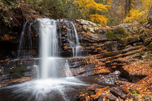 Straight Branch Falls