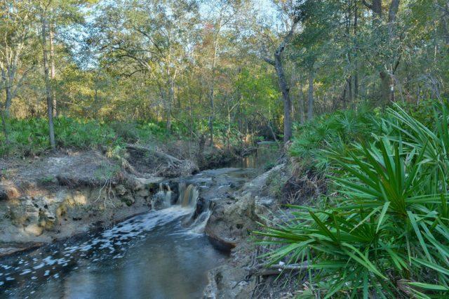 Big Shoals State Park Falls in Florida