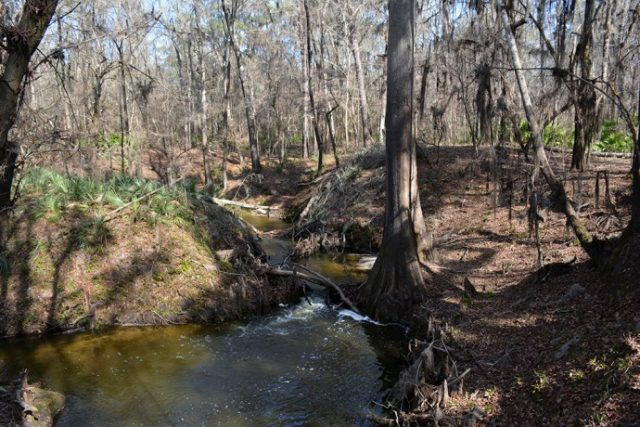 Disappearing Creek Falls in Florida