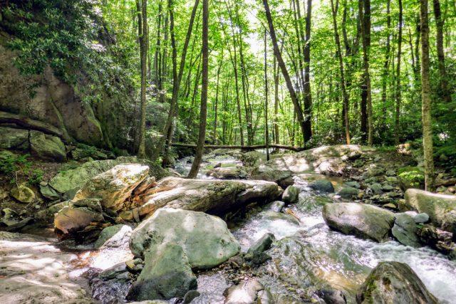 Otter Falls Trail in Northern North Carolina