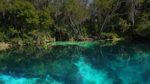Rainbow Springs in Florida