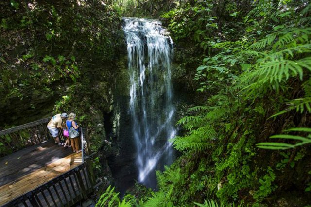 Waterfalls in Florida