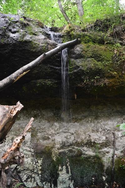 Weeping Ridge Falls in Florida