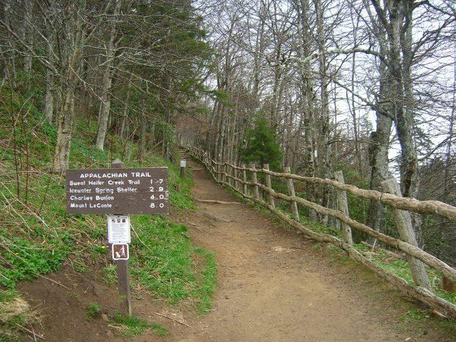 Appalachian Trail in Northern Georgia