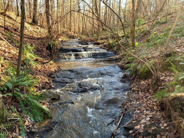 Chattahoochee Bend Riverside-Bend Trail in Western Georgia