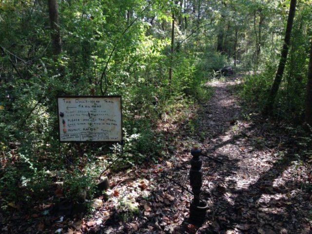 Doll's Head Trail in Northern Georgia