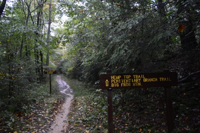 Hemp Top Trail in Northern Georgia