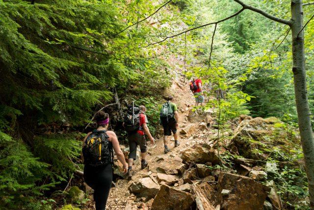Hiking Trails in Georgia