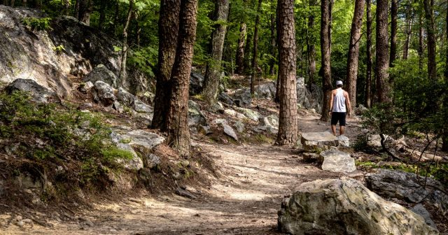 Pine Mountain Trail in Western Georgia