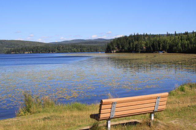 Birch Lake in Alaska