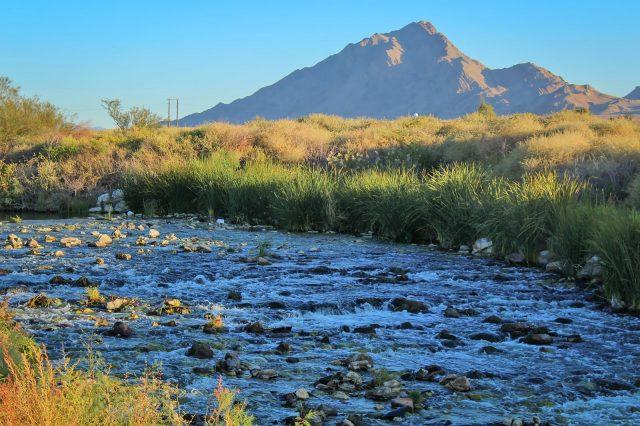 Clark County Wetlands Park Nature Preserve Trails Las Vegas